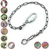 ebamaz Pet Bird Leash Parrot Foot Chain Stainless Steel 304 Anklet Ring (Model 12 (11.5mm))