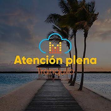 #Atención plena Tranquilo