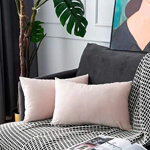 UPOPO Juego de 2 fundas de cojín de terciopelo, decorativas, de un solo color, suave, con cremallera, 30 x 50 cm, color rosa