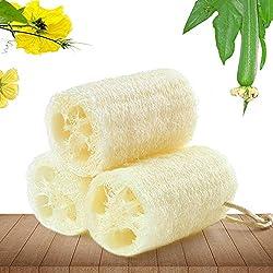 ducha al aire libre. Esponja de baño natural, orgánica y exfoliante