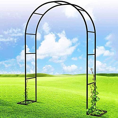 DWXN Arco de Escalada de Rosas de Acero Pintado en Polvo, Arco de Rosas de jardín de Alto Rendimiento, Arco de cenador de jardín de Metal Enrejado, con Marco de Soporte