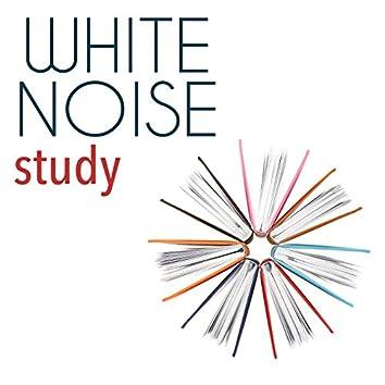 White Noise: Study