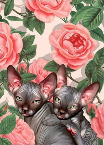 Posterlounge Cuadro de Aluminio 100 x 130 cm: Kitten and Roses de Mandy Reinmuth