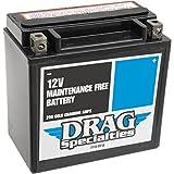 Batería AGM Maintenance-Free Drag Specialties para Harley Davidson Sportster XL...