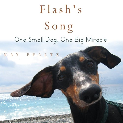 Flash's Song audiobook cover art