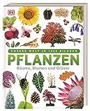Pflanzen: Bäume, Blumen und Gräs...