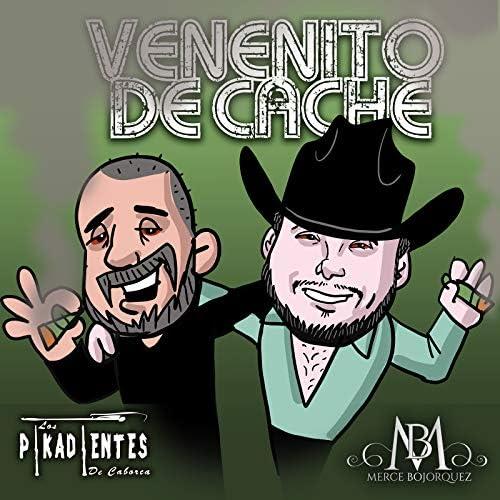 Merce Bojorquez feat. Los Pikadientes De Caborca