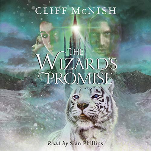 The Wizard's Promise cover art