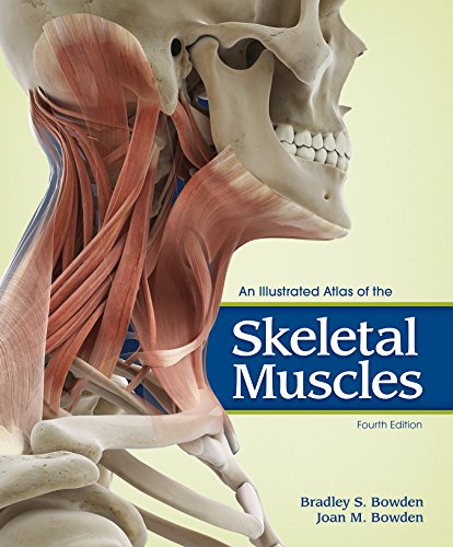 An Illustrated Atlas of the Skeletal Muscles