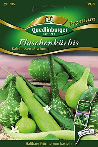 Flaschenkürbis Mischung von Quedlinburger Saatgut