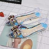 DZQQ Sandalias para Mujer, Zapatos con Nudo de Mariposa de Cristal, Remaches Femeninos, Sandalias Informales a la Moda para Mujer, 2021, Tacones Transparentes para Verano