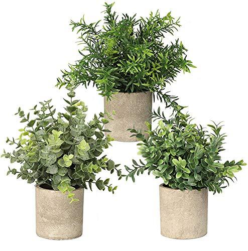 Topcloud Künstliche Mini-Pflanzen im Topf, Eukalyptus, Rosmarin, Pflanzen, für Zuhause, Büro, Tisch, Schlafzimmer, Innen- und Außenbereich, 3 Stück