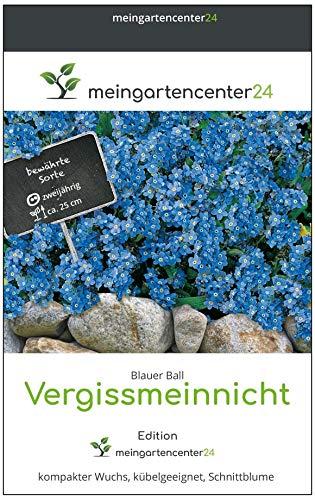 mgc24® Vergissmeinnicht 'Blauer Ball' Myosotis sylvatica - Frühjahrsblüher, kompakter Wuchs