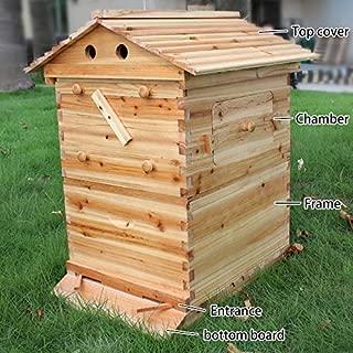 Global-E Bee Hive with 7 Piece Flow Frame - Bonus 64oz. Glass Mason Jar Included!