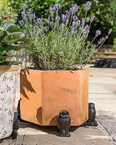 Pot de fleurs Pieds – Grand hibou Bronze (lot de 3)