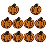 XUNHUI Pumpkin Applique Patch Iron On Clothes Small Patch for Clothing Iron Embroidered Patch Applique Iron Sew on DIY Patches Sewing Accessories for Clothes 10 Pieces