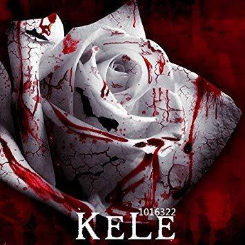 Fash Lady Grosses soldes!150 graines/paquet plus rare sang blanc Rose plante fleur graines jardin Asaka rare graine Rose du sang vrai, L492Q0