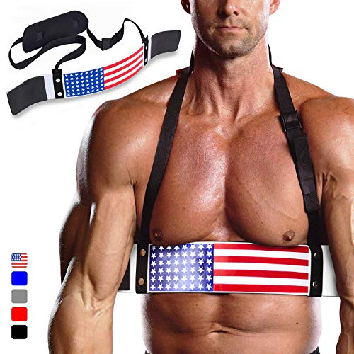 DMoose Fitness Arm Curl Blaster for Bicep Body Building and Muscle Strength Gains, Contoured and Adjustable Isolate for Curling and Weightlifting, Well Balanced Support (American)