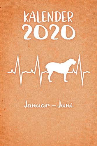 Kalender 2020: Oranger Tageskalender Alabai Herzschlag Hunde 1. Halbjahr Januar Juni ca...