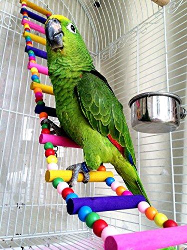 Moonpet coloré Échelle jouet pour oiseau, 12 étapes Flexible échelles pont arc-en-ciel en bois balançoires pour les perroquets pour animal domestique d'entraînement, 8,1 cm W/66 cm L