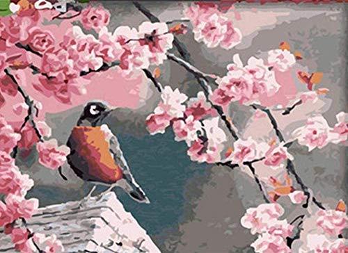 HAON Roze perzikbloesems en ekster vogels verf door getallen kits DIY digitaal schilderen kleuren op canvas olieverfschilderij door jezelf handgemaakte 40x50cm frameloze
