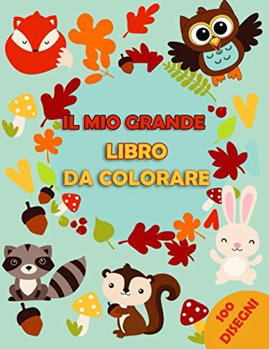 Il Mio Grande Libro Da Colorare: 100 Pagine Con Disegni Grandi Per Bambini | Un Fantastico Libro Completo da Colorare per Bambini con tanti simpatici animali, fate, unicorni, draghi e sirene.