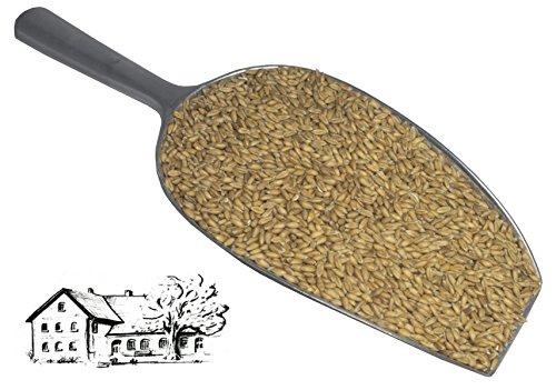 Dinkel 10 kg (Urdinkel) direkt vom Dinkelhof Horstmann, aktuelle Ernte 2020, Kostenloser Versand,