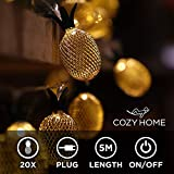 Ananas LED Lichterkette Deko Lampe - 5 Meter | Mit Netzstecker NICHT batterie-betrieben | 20 LEDs...