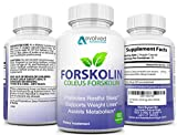 Best Forskolin Supplements - Max Strength 100% Pure Forskolin Extract - Immune Review