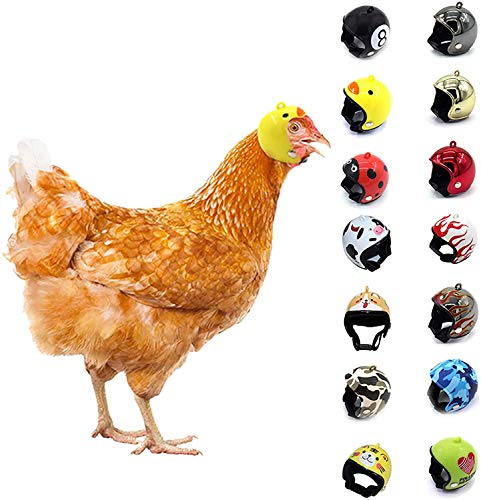 14 unidades de casco de pollo, protección contra la lluvia para el sol, casco de loro divertido sombrero de pájaro de pollo casco de seguridad