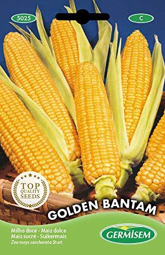 Germisem Golden Bantam Semi di Mais Dolce 10 g