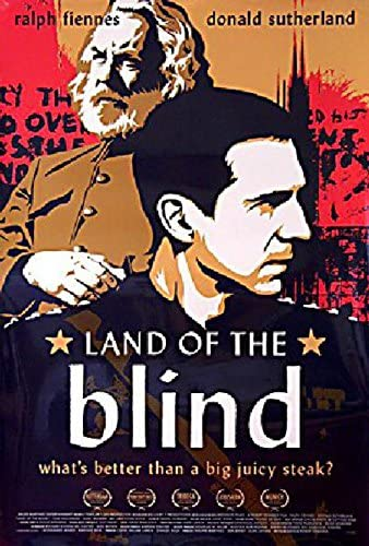 Land Inventory cleanup selling sale of the Blind 2006 One Sheet U.S. Poster Popular popular