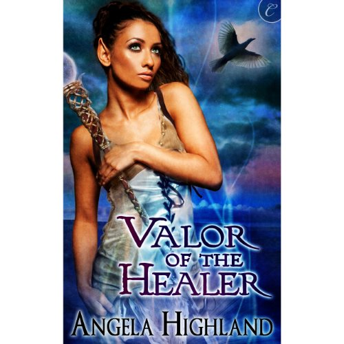 Valor of the Healer audiobook cover art