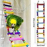 Zoom IMG-2 pietypet giochi per uccelli pappagalli