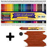 June Gold 36 Assorted Colored 2.0 mm Mechanical Pencils, 36 Unique Colors and 36 Brown Lead Refills