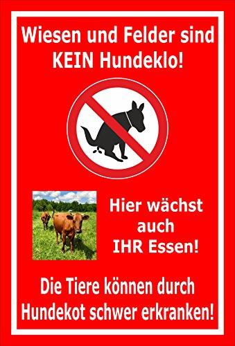 Schild - weiden en velden zijn geen hondenlo- 15x10cm, 30x20cm en 45x30cm - Boorgaten stickers hardschuim aluminium composiet S00187-033-D