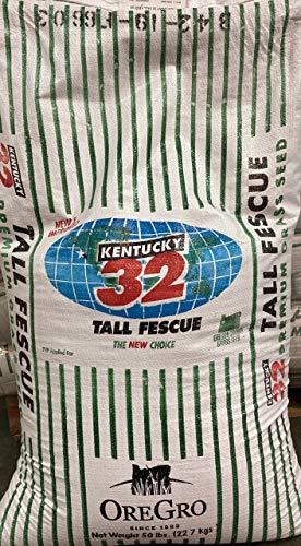SeedRanch Kentucky 32 Tall Fescue Grass Seed - 50 Lbs.