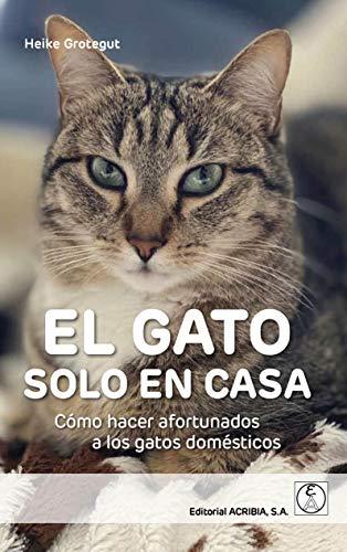 EL GATO SOLO EN CASA: Cómo hacer afortunados a los gatos domésticos