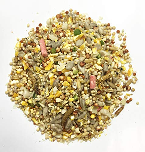Pet Performance Garden Feast Wild Bird Food Mix, 20kg, Top quality blend of mealworms & suet pellets for high energy & protein boost, ideal for hanging feeders, ground feeders & bird tables