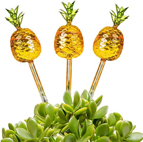OUTCREATOR 3 Pack Plant Watering Globes Set Pineapple Shaped Automatic Self Water Bulbs Water product image