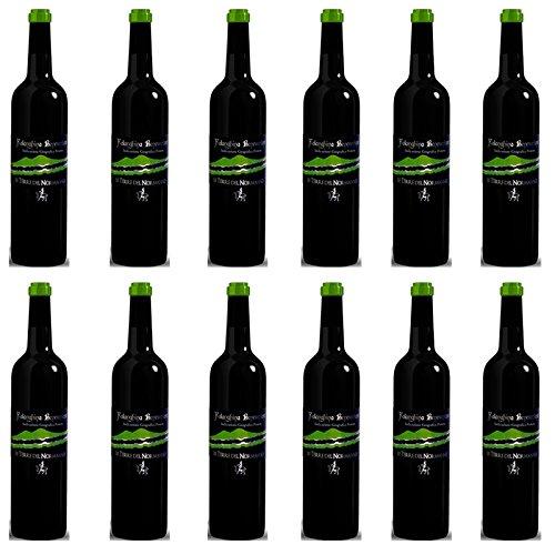 Falanghina del Beneventano | Le Terre del Normanno | 12 Bottiglie 75cl | Vino Bianco Campania | Idea Regalo