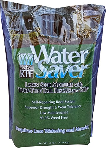 WaterSaver Grass Mixture with Turf-Type Tall Fescue Used to Seed New Lawn and Patch Up Jobs - Grows...