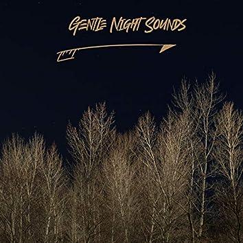 Gentle Night Sounds: Guarantee of Deep Sleep