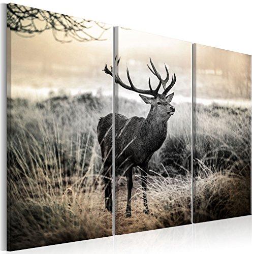 murando Impression sur Toile intissee Cerf 120x80 cm Tableau Tableaux Decoration Murale Photo Image Artistique Photographie Graphique Animal Nature g-B-0053-b-h
