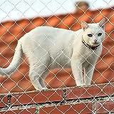 Redes de balcón para Gatos, Red de Seguridad para Balcones y Ventanas, Red Protectora Transparente para Gatos, Red Anti-Escape para Mascotas, Valla de Seguridad