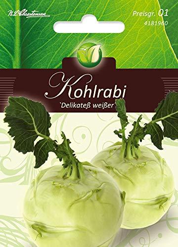 Kohlrabi, Delicatezza bianco/Delikateß Weiß.