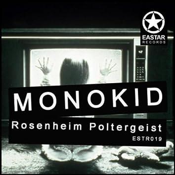 Rosenheim Poltergeist