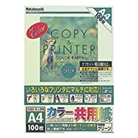 ロアス コピー用紙 A4 100枚 カラー共用紙 MCP-A4G