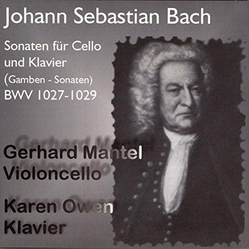 3 Sonatas for Viola da Gamba and Harpsichord, No. 2 in D Major, BWV 1028: I. Adagio (Arr. for Cello and Piano)