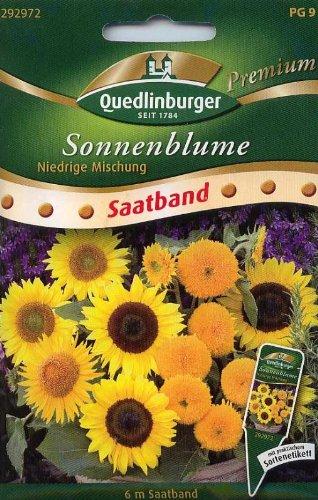 SB Sonnenblumen, niedrige Mischung